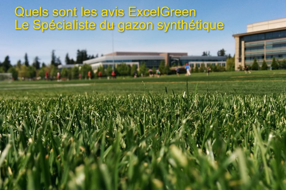 Avis exelgreen le spécialiste du gazon artificiel en France